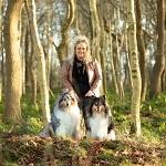 Gesunde Ernährung für Hunde mit alsa-nature Hundefutter.