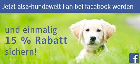 Jetzt alsa Fan bei Facebook werden