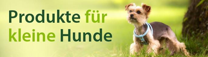 Produkte für kleine Hunde