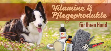 Vitamine & Pflegeprodukte für Ihren Hund