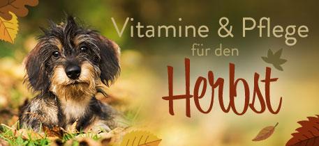 Vitamine & Pflege für den Herbst