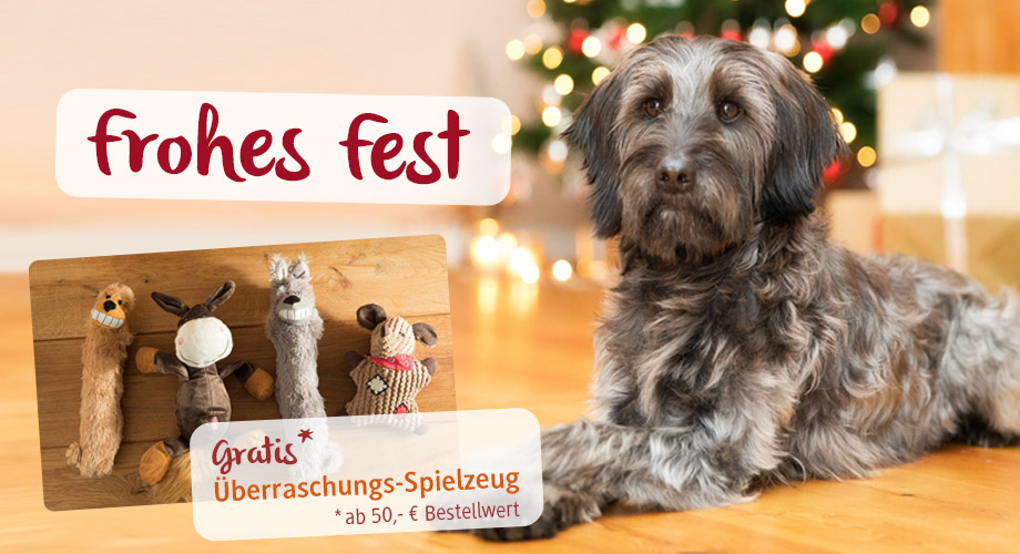 Dezember-Mailing - Frohes Fest