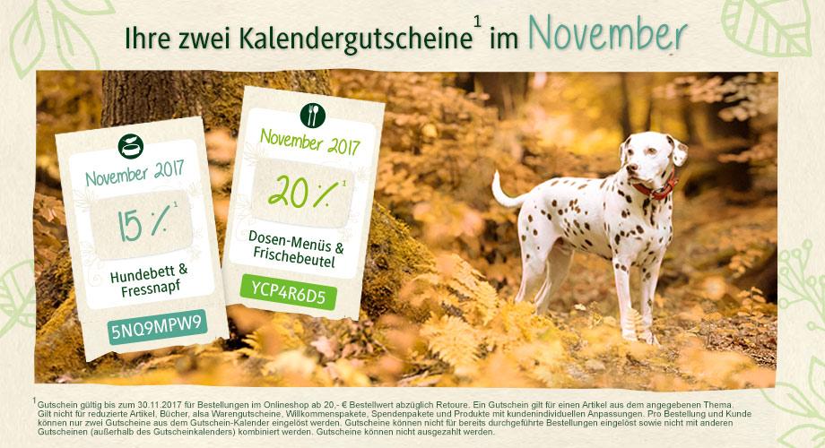 Gutscheinkalender November 2017