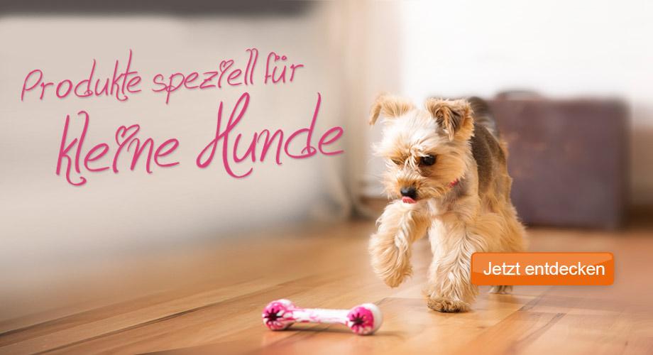 Produkte speziell für kleine Hunde