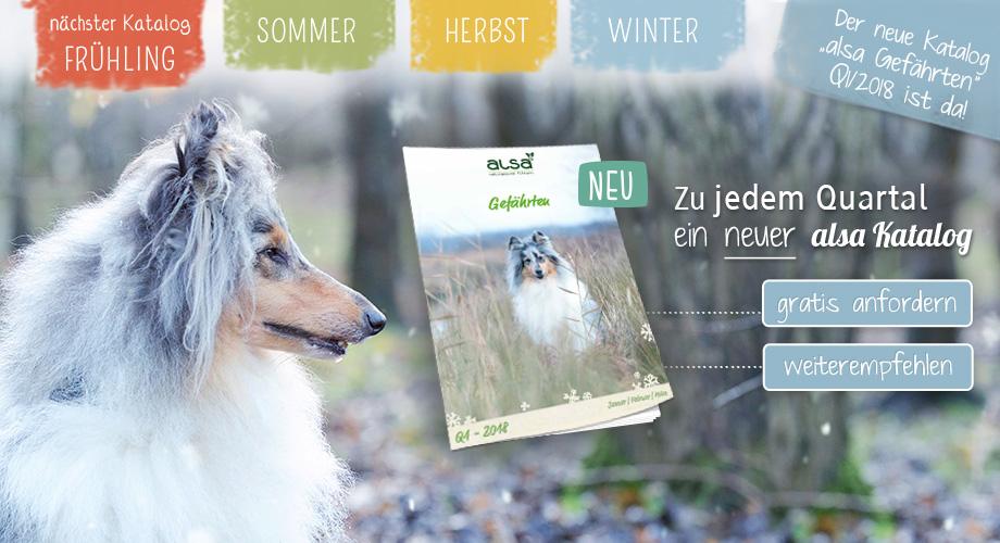 Januar Mailing - Der neue Katalog ist da!