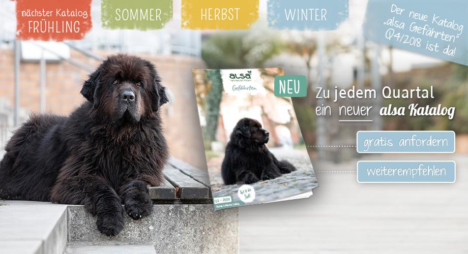 Juli Mailing - Der neue Katalog ist da!