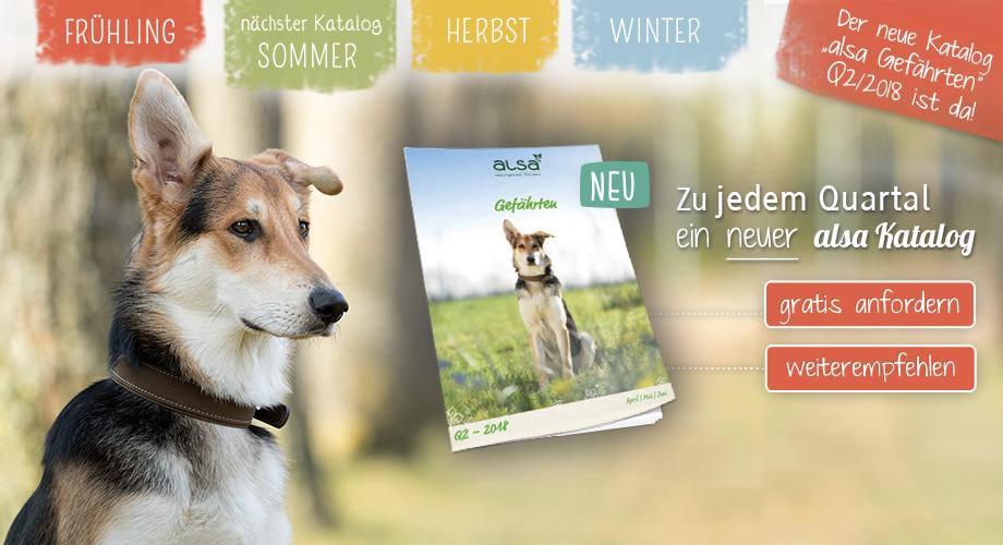 April Mailing - Der neue alsa Katalog ist da!