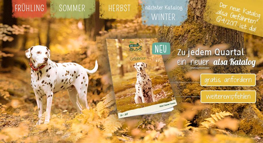 Oktober Mailing - Der neue Katalog ist da!