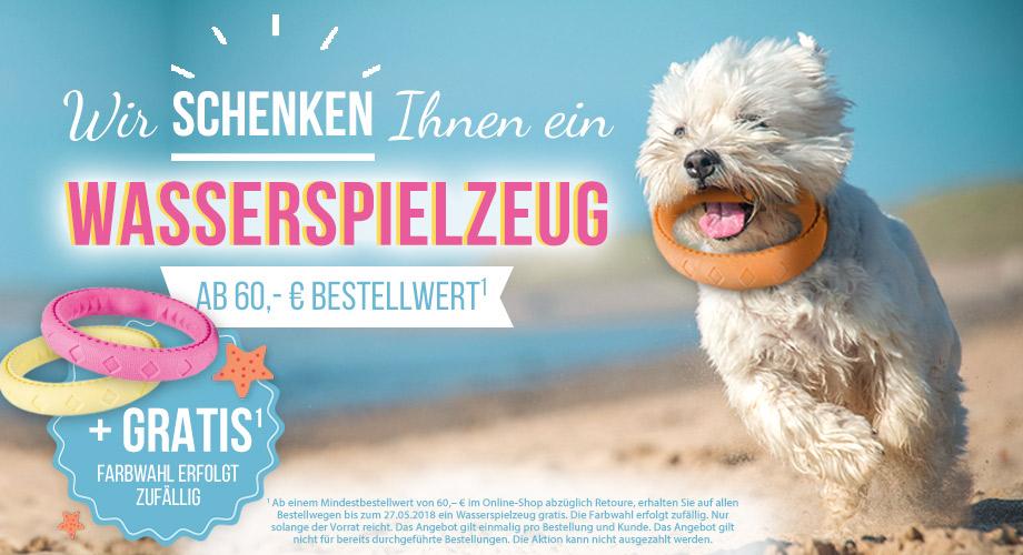 Wir schenken Ihnen ein Wasserspielzeug für Ihren Hund!