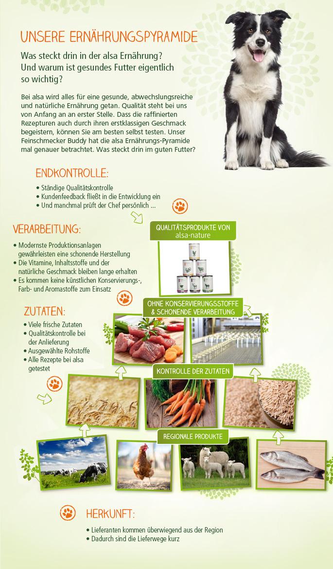 Unsere Ernährungspyramide Was steckt drin in der alsa Ernährung? Und warum ist gesundes Futter eigentlich so wichtig? Bei alsa wird alles für eine gesunde, abwechslungsreiche und natürliche Hunde-Ernährung getan. Qualität steht bei uns von Anfang an an erster Stelle. Dass die raffinierten Rezepturen auch durch ihren erstklassigen Geschmack begeistern, können Sie am besten selbst testen. Unser Feinschmecker Buddy hat die alsa Ernährungs-Pyramide mal genauer betrachtet. Was steckt drin im guten Futter?  Endkontrolle: Ständige Qualitätskontrolle Kundenfeedback fließt in die Entwicklung ein Und manchmal prüft der Chef persönlich ...  Verarbeitung Modernste Produktionsanlagen gewährleisten eine schonende Herstellung Die Vitamine, Inhaltsstoffe und der natürliche Geschmack bleiben lange erhalten Es kommen keine künstlichen Konservierungs-, Farb- und Aromastoffe zum Einsatz  Zutaten: Viele frische Zutaten Qualitätskontrolle bei der Anlieferung Ausgewählte Rohstoffe Alle Rezepte bei alsa getestet  Herkunft: Lieferanten kommen überwiegend aus der Region Dadurch sind die Lieferwege kurz