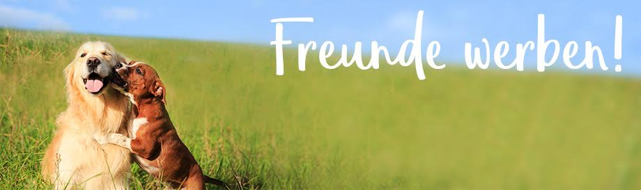 Jetzt Freunde werben und tolle Prämien im alsa-hundewelt Onlineshop sichern!