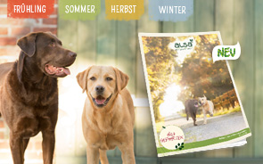 Fordern Sie gratis unseren Quartalskatalog an. Dieser enthält eine große Auswahl aus naturgesundem Hundefutter und hochwertigem Zubehör.