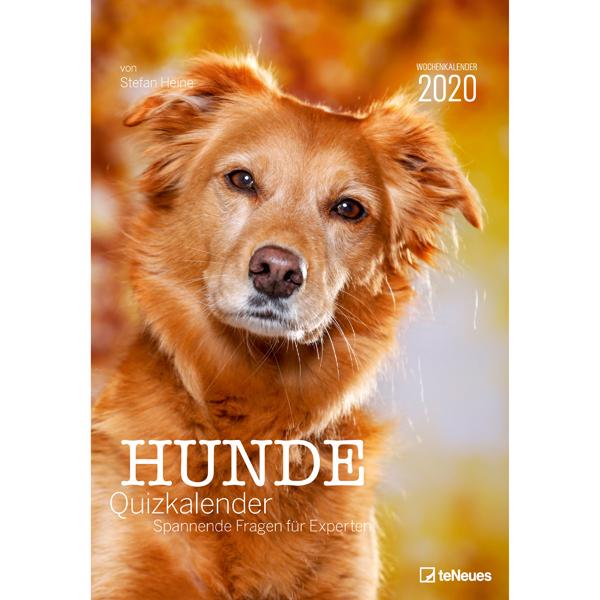 "teNeues Hunde-Quizkalender ""Dogquiz 2020"""