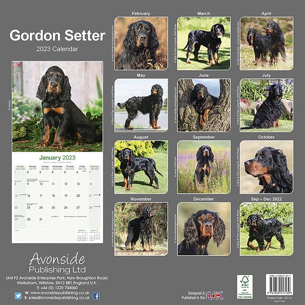 """Kalender 2021 """"Gordon Setter"""""""