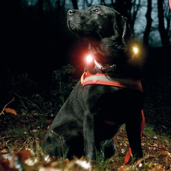 "Orbiloc Leuchtanhänger ""Safety Light"""