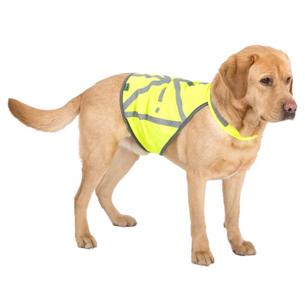 "HUNTER Hunde-Warnweste ""Safety"""