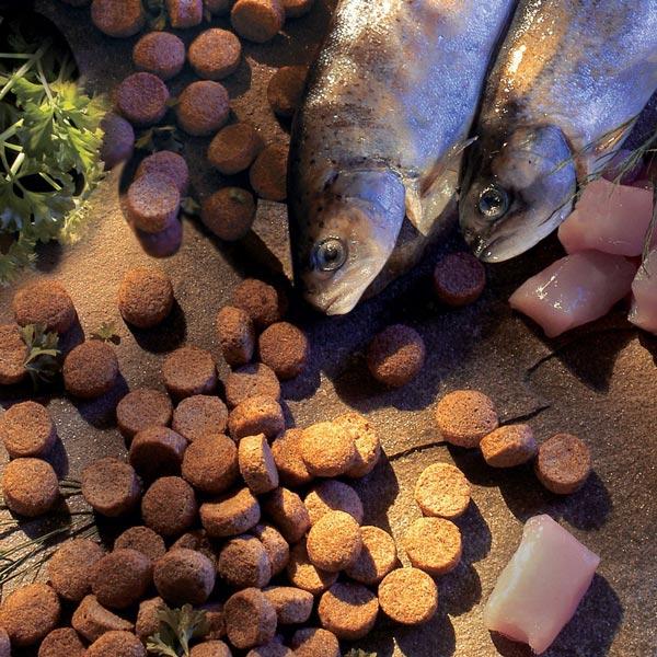 alsa-nature Fisch & Huhn