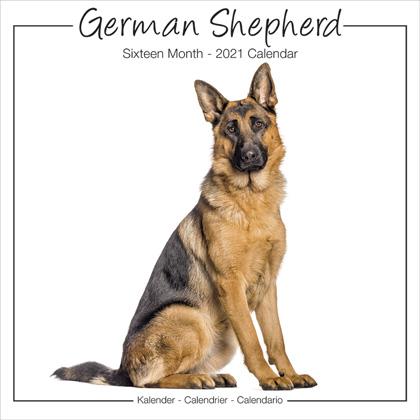 """Studio Kalender 2021 """"Deutscher Schäferhund"""""""