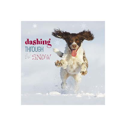 "Weihnachtskarte ""Dashing Through The Snow"""