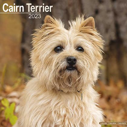 """Kalender 2018 """"Cairn Terrier"""""""