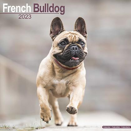 """Kalender 2018 """"Französische Bulldogge"""""""