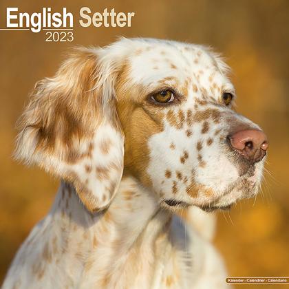 "Kalender 2021 ""Engelse Setter"""