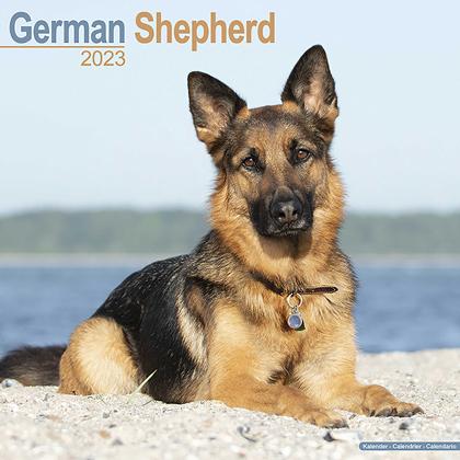"""Kalender 2018 """"Deutscher Schäferhund"""""""