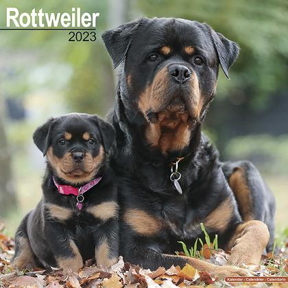 """Kalender 2022 """"Rottweiler"""""""