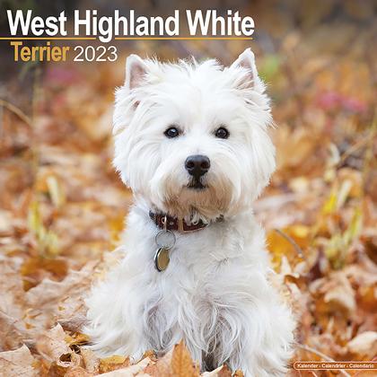 "Kalender 2019 ""Westie"""