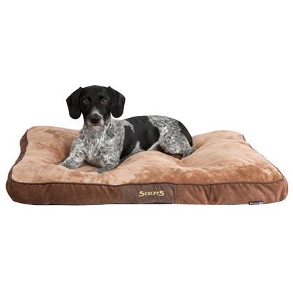 hundebetten n pfe f r gro e hunde alsa hundewelt. Black Bedroom Furniture Sets. Home Design Ideas