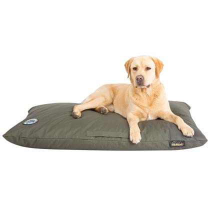 "Scruffs Hundekissen ""Expedition Memory Foam"""