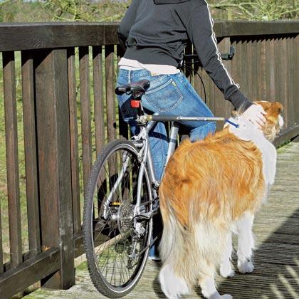 "Fahrradhalter ""Go for a walk"""
