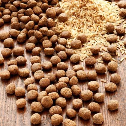 alsa-nature INSECTUM Reis