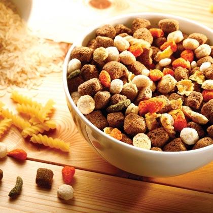 alsa-nature Menü-Mix