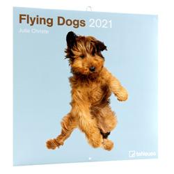 Hundekalender Flying Dogs 2021 bunt