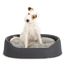 curver Hundekorb Rattan dunkelgrau, Außenmaße: ca. 112 x 93 x 27 cm - alsa-hundewelt