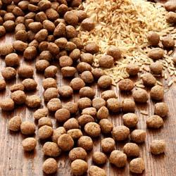 alsa-nature INSECTUM Reis Trockenfutter, 12 kg, Hundefutter trocken - alsa-hundewelt