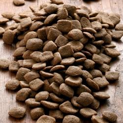 alsa-nature Vital Trockenfutter, 2 x 12 kg, Hundefutter trocken - alsa-hundewelt