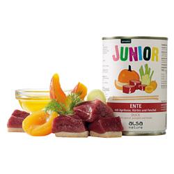 alsa-nature JUNIOR Ente mit Aprikose, Kürbis & Fenchel Nassfutter, Anzahl: 400 g, 400 g, Hundefutter nass