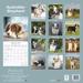 "Kalender 2021 ""Australian Shepherd"""