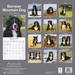 "Kalender 2020 ""Berner Sennenhund"""