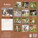 "Kalender 2021 ""Bulldogge"""