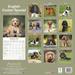 "Kalender 2021 ""Cocker Spaniel"""