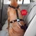 """HUNTER Autosicherheitsgeschirr """"Easy Comfort"""""""