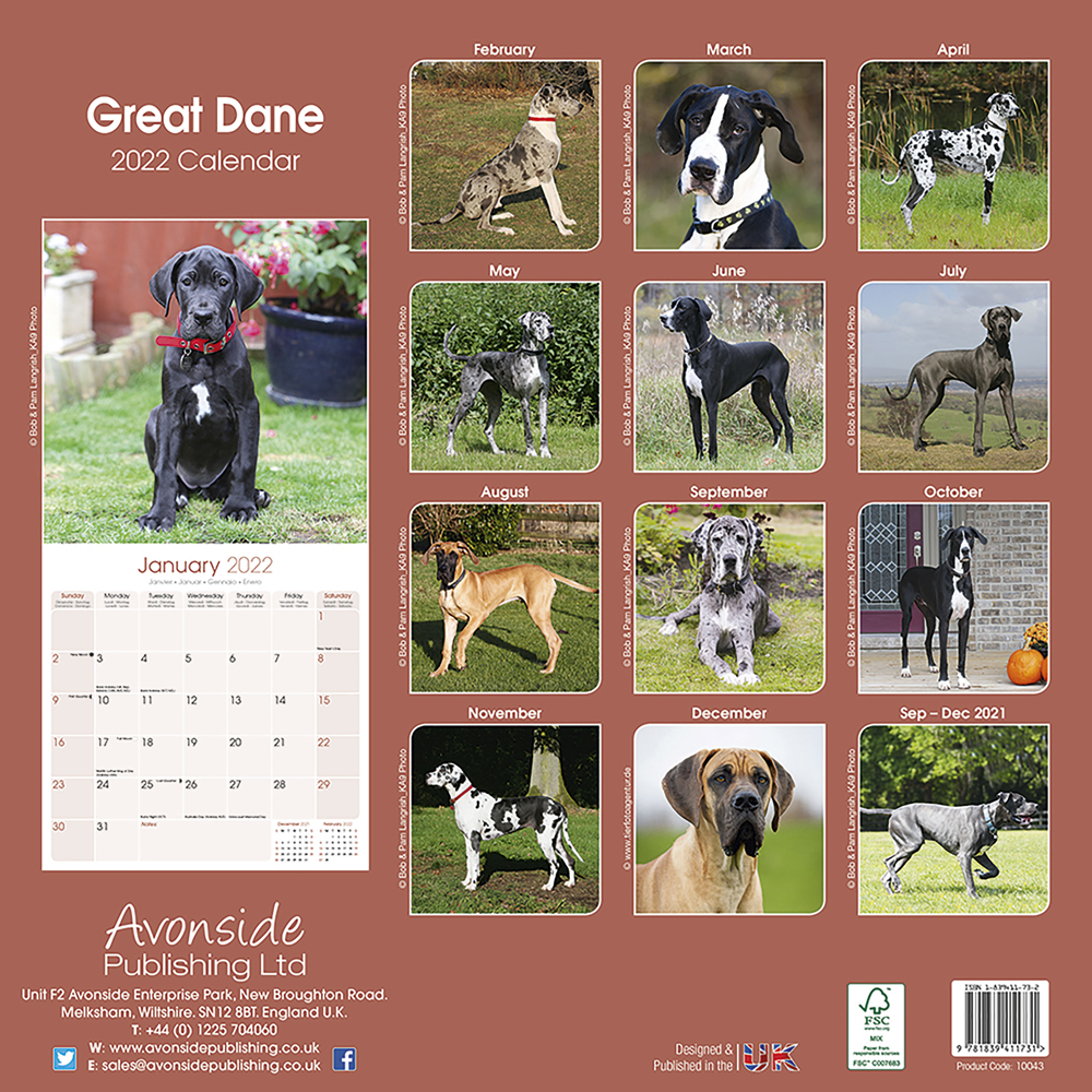 kalender 2019 deutsche dogge alsa hundewelt. Black Bedroom Furniture Sets. Home Design Ideas