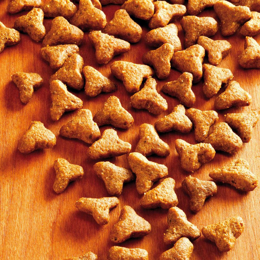 alsa-nature Delicate Trockenfutter, 3 x 1,5 kg - alsa-hundewelt