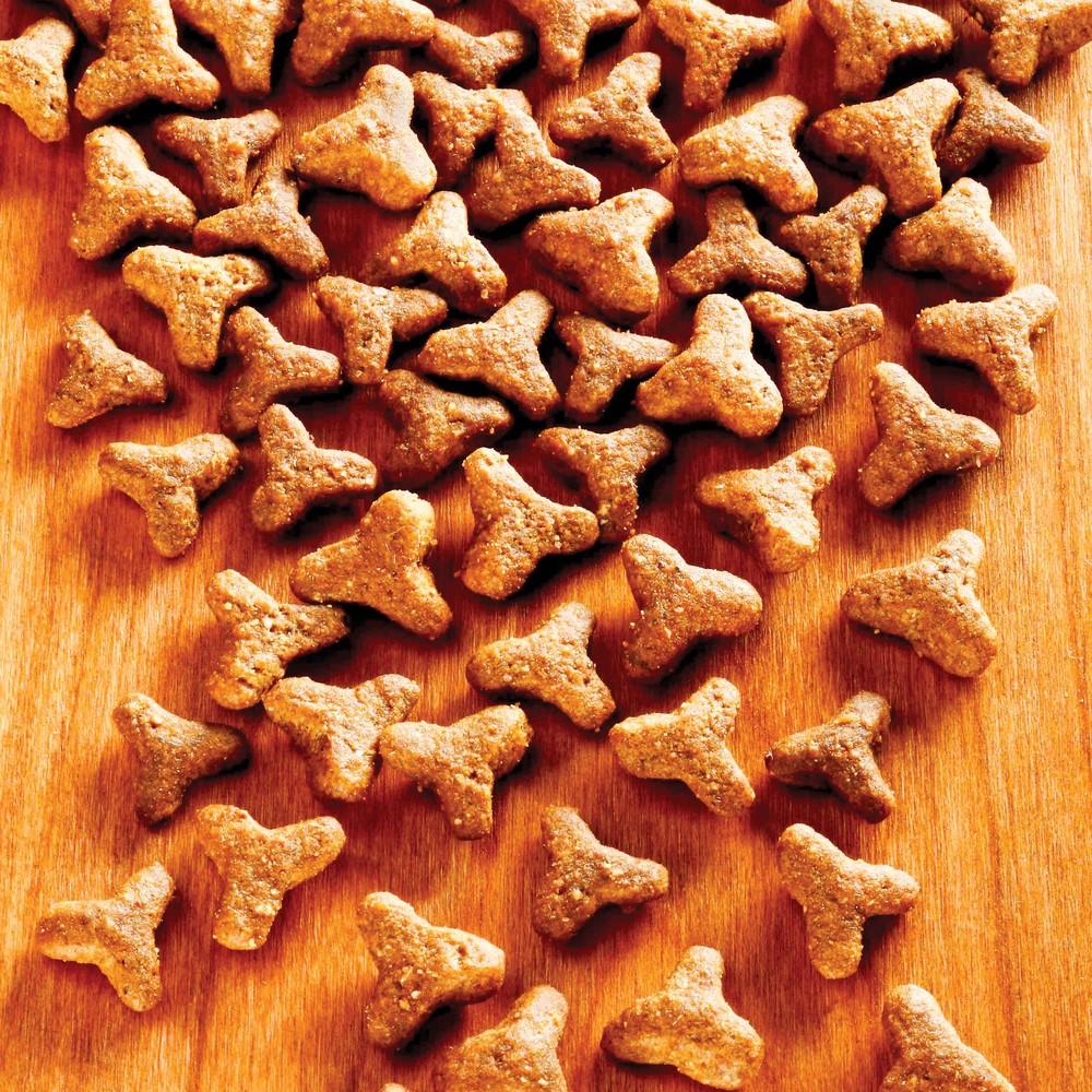alsa-nature Basic Trockenfutter, 4 x 1,5 kg - alsa-hundewelt