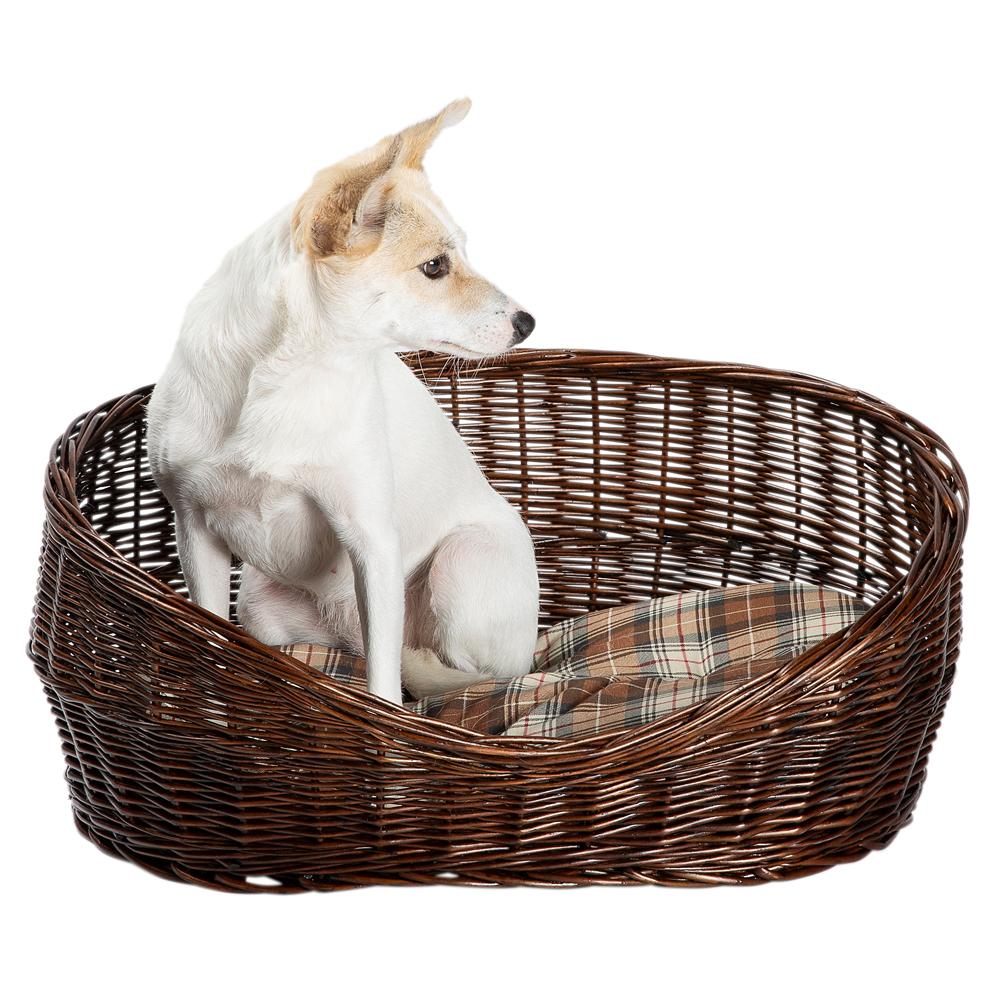 Hundekorb Willow braun - alsa-hundewelt