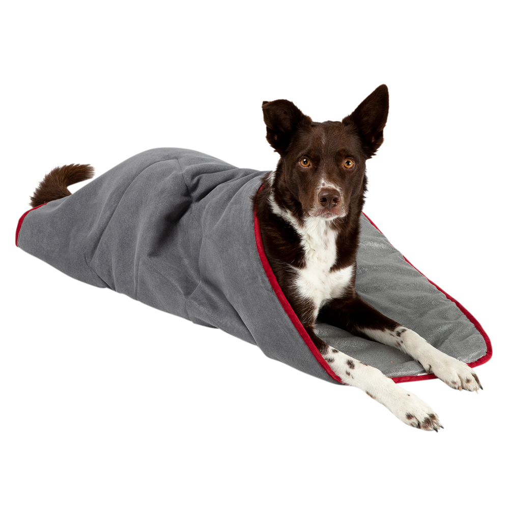 Scruffs Hundedecke Thermal Self Heating Pet Blanket schwarz - alsa-hundewelt