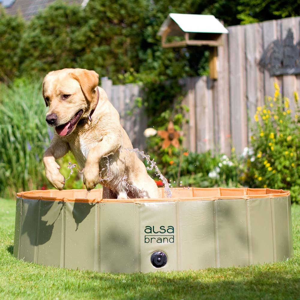 alsa-brand Dog-Playpool hondenzwembad